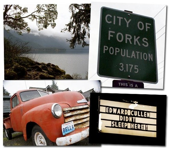 forks-washington-twilight